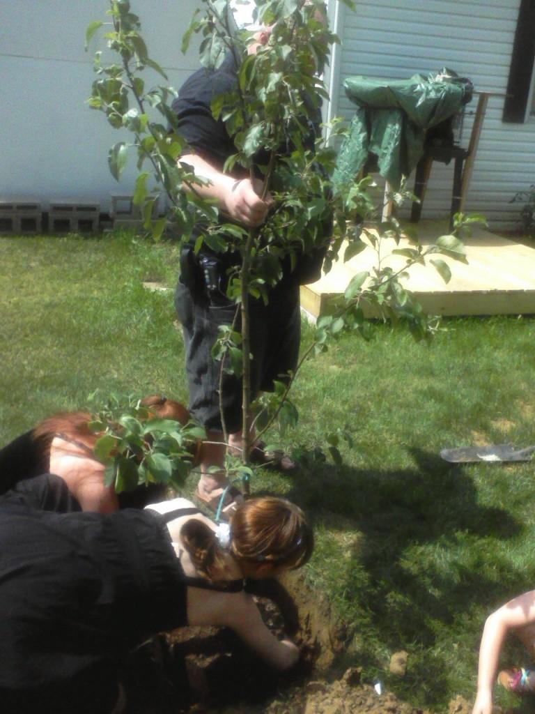 Neophytes planting The Beltane Tree