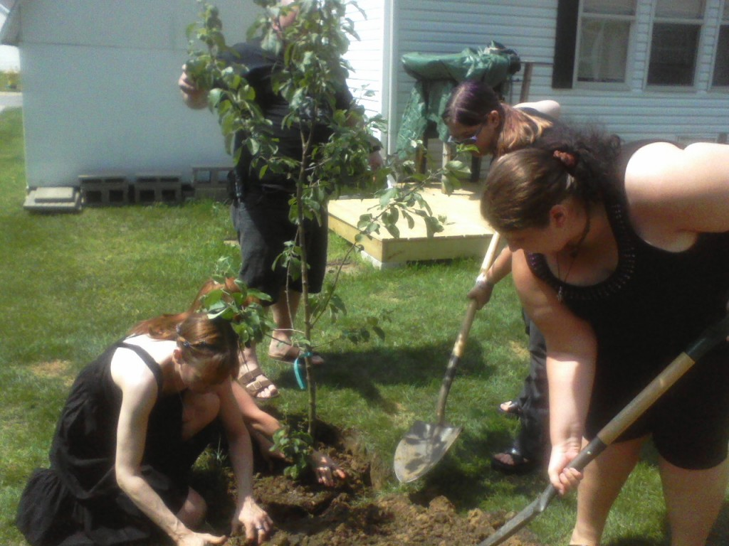 Neophytes planting The Beltane Tree