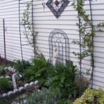 Coven's Herb Garden