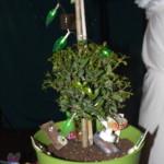 May Tree